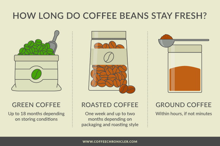coffee freshness infographic