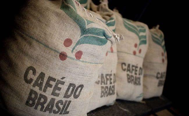 crop brazil coffee