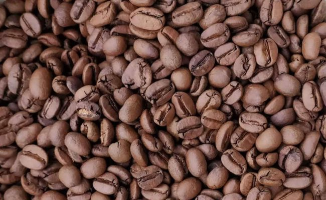 french press beans