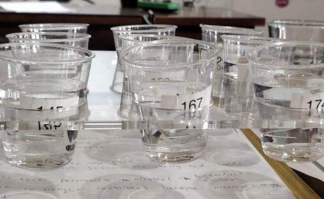 sensory test (1)